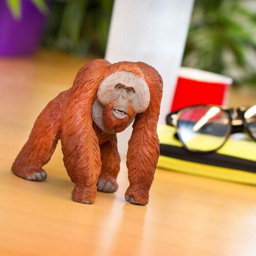 Bornean Orangutan Toy Perspective: back