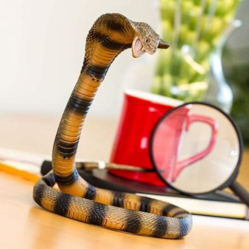 Cobra Perspective: back