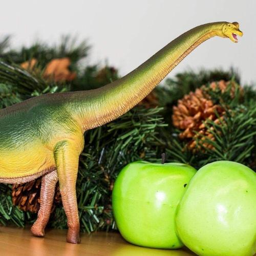 Brachiosaurus Toy Perspective: back