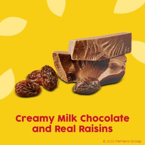 Raisinets Milk Chocolate Covered Raisins Perspective: back