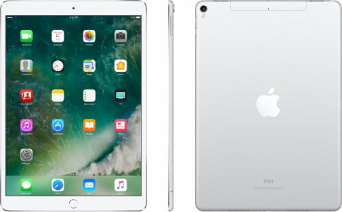 Apple iPad Pro 512 GB Tablet - Silver Perspective: back