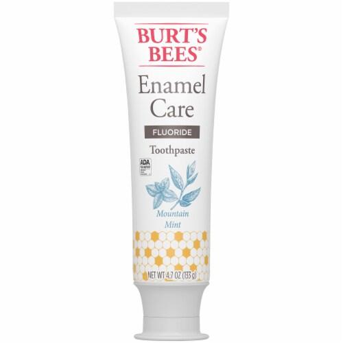 Burt's Bees Mountain Mint Enamel Care Flouride Toothpaste Perspective: back