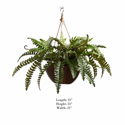 Faux Boston Fern  Hanging Natural and Lifelike Artificial Arrangement and Imitation Greenery Perspective: back