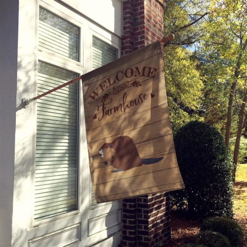 Carolines Treasures  CK6817CHF Eurasian Beaver Welcome Flag Canvas House Size Perspective: back