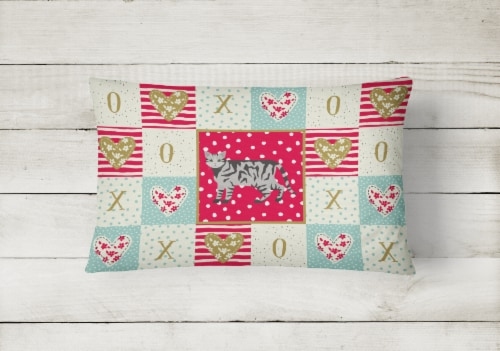 European Shorthair #2 Cat Love Canvas Fabric Decorative Pillow Perspective: back