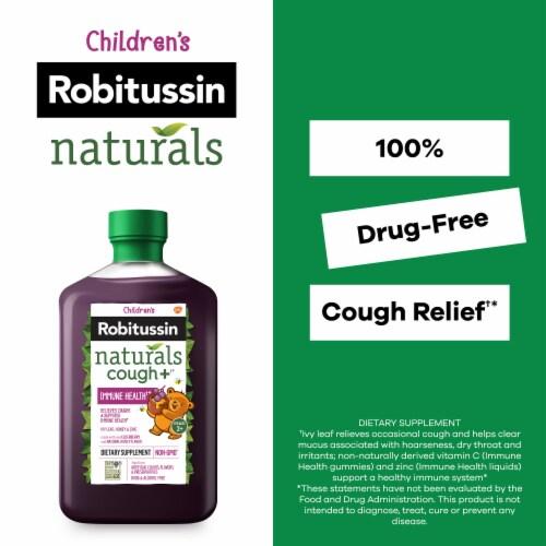 Robitussin Naturals Honey Ivy Leaf & Zinc Children's Cough Relief Syrup Perspective: back