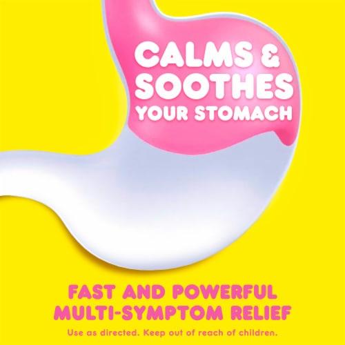 Pepto-Bismol Original Multi-Symptom Relief Liquid Perspective: back