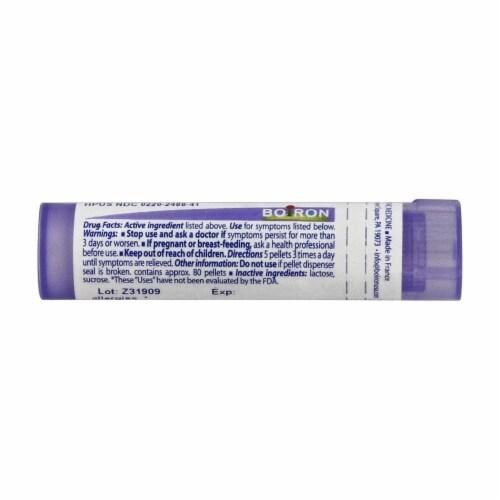 Boiron Histaminum Hydrochloricum 200 CK, 80 Pellets Perspective: back