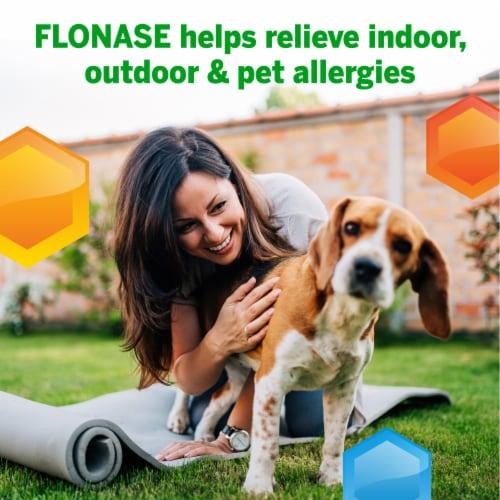 Flonase 24-Hour Allergy Relief Spray Perspective: back