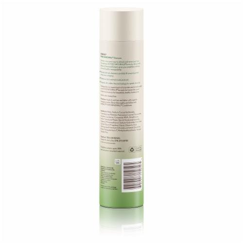 Aveeno Pure Renewal Shampoo Perspective: back