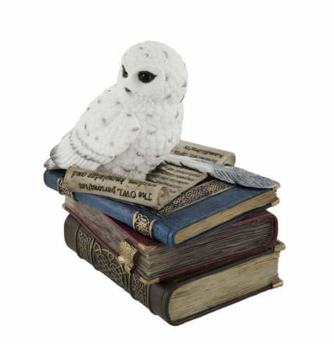 Wise Snow Owl Resting on Scholar`s Books Trinket Box Perspective: back