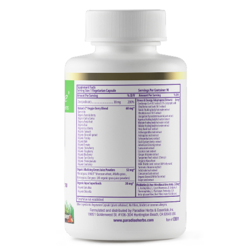 Paradise Earth's Blend Zinc Picolinate Vegetarian Capsules Perspective: back