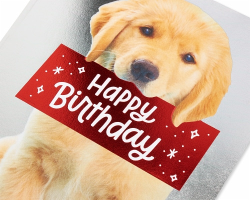 American Greetings #30 Birthday Card (Puppy) Perspective: back