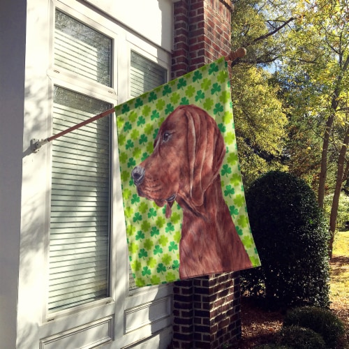 Redbone Coonhound Lucky Shamrock St. Patrick's Day Flag Canvas House Size Perspective: back