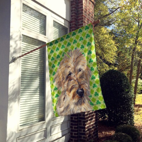 Golden Doodle 2 Lucky Shamrock St. Patrick's Day Flag Canvas House Size Perspective: back