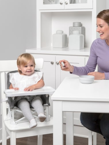 Regalo Portable Booster Seat & High Chair - Gray Perspective: back