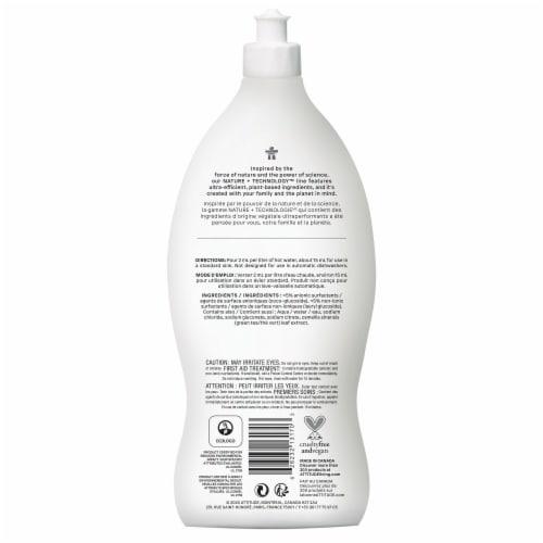 Dishwashing Liquid - Unscented Perspective: back