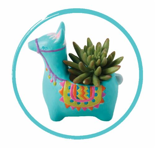 Modern Wonder Ceramic Flower Pot Kit 2 Pack - Llama & Fox Perspective: back