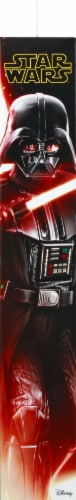 Hasbro Star Wars Hero Series Darth Vader Action Figure Perspective: back