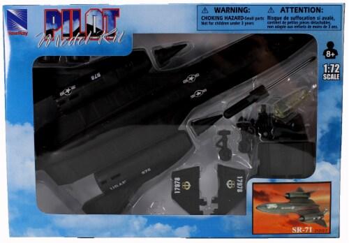 Snap Together Model SR-71 Blackbird Jet Fighter Perspective: back