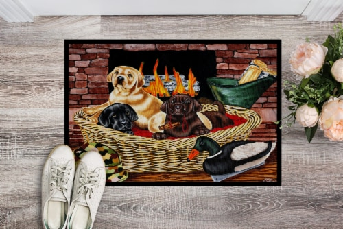The Next Generation Labrador Indoor or Outdoor Mat 18x27 Perspective: back