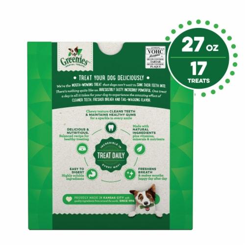 Greenies Original Large Dog Dental Treats 17 Count Perspective: back