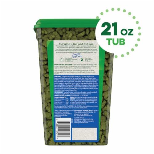 Greenies Tempting Tuna Flavor Cat Dental Treats Perspective: back