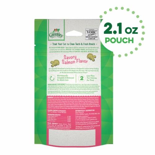 Feline Greenies™ Savory Salmon Flavor Dental Treats for Cats Perspective: back