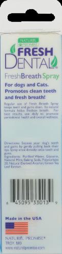 Fresh Dental Spray Perspective: back