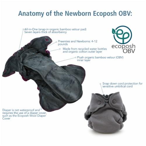 Ecoposh OBV Newborn AIO Fitted Cloth Diaper Boysenberry Perspective: back