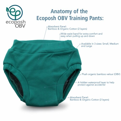 Ecoposh OBV Training Pants Caribbean Small 1T/2T Perspective: back