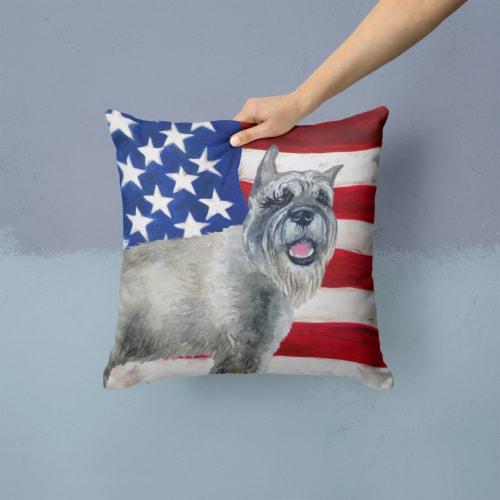 Carolines Treasures  BB9662PW1414 Schnauzer Patriotic Fabric Decorative Pillow Perspective: back