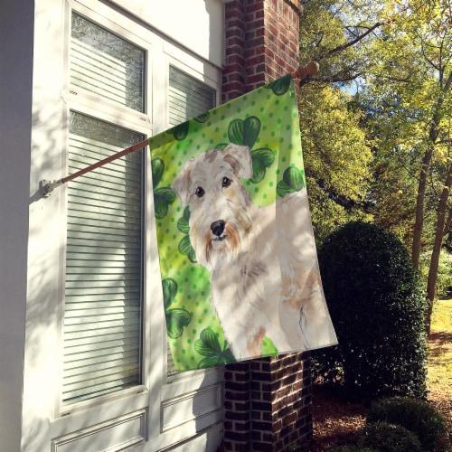Carolines Treasures  CK1783CHF Shamrocks Wheaten Terrier Flag Canvas House Size Perspective: back