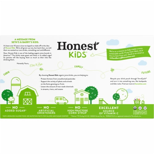 Honest Kids Organic Appley Ever After Juice Pouches Perspective: back