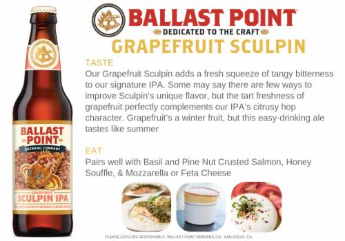 Ballast Point Grapefruit Sculpin Craft Beer Perspective: back