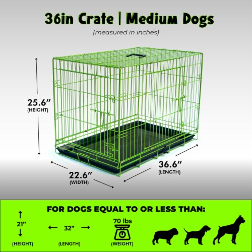 Backyard Expressions Double Door Wire Dog Kennel Pet Crate Perspective: back