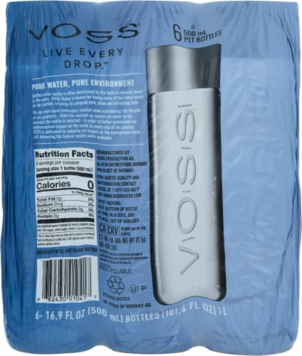 VOSS® Artesian Water Perspective: back