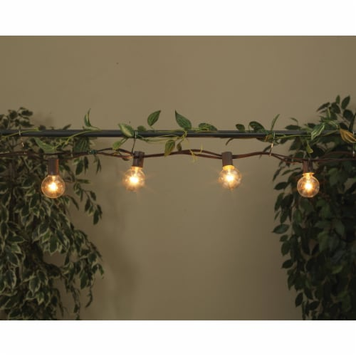 Gerson 20 Ft. 20-Light Clear Bulb String Lights 2201300 Perspective: back