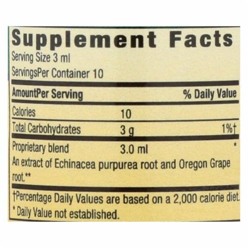 Herbs for Kids Orange Flavor Echinacea/Golden Root Dietary Supplement Perspective: back