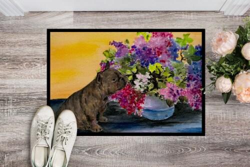 Carolines Treasures  SS8536MAT French Bulldog Indoor Outdoor Mat 18x27 Doormat Perspective: back