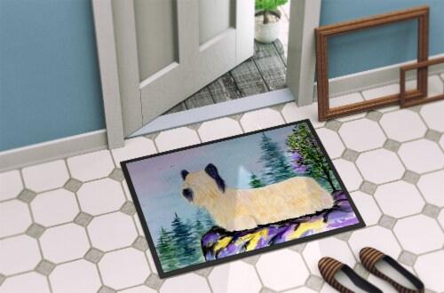 Carolines Treasures  SS8679JMAT Skye Terrier Indoor or Outdoor Mat 24x36 Doormat Perspective: back