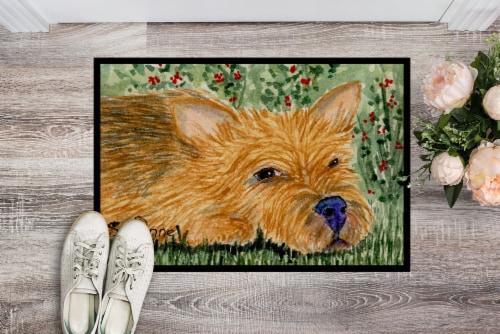Carolines Treasures  SS8862JMAT Norwich Terrier Indoor or Outdoor Mat 24x36 Door Perspective: back