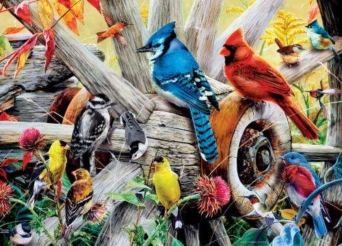 MasterPieces Audubon Backyard Birds Puzzle Perspective: back