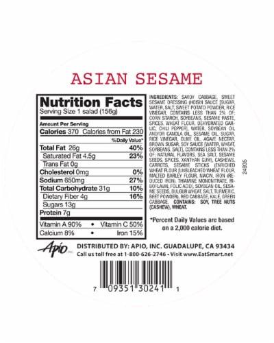 Eat Smart Shake Ups Asian Sesame Salad Bowl Perspective: back