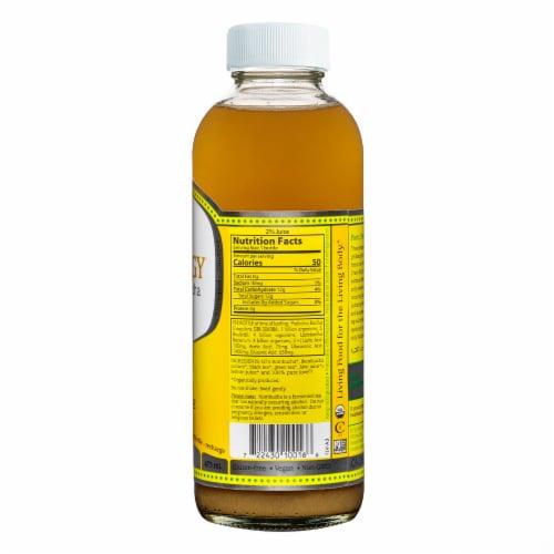 GT's Living Foods Synergy Organic Lemonade Raw Kombucha Perspective: back