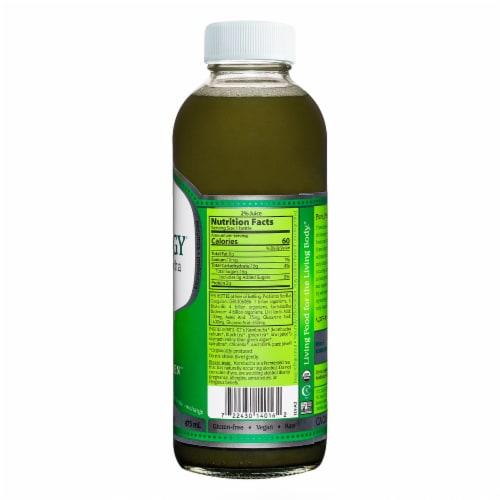 GT's Living Foods Synergy Organic Multi-Green Raw Kombucha Perspective: back