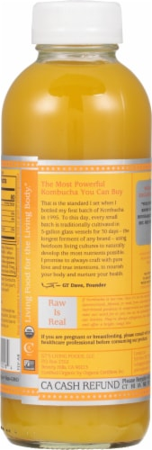GT's Living Foods Synergy Organic & Raw Mystic Mango Kombucha Perspective: back