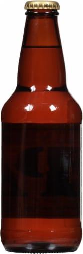 Lagunitas Ipa Beer Perspective: back