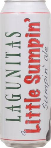 Lagunitas Little Sumpin Sumpin IPA Beer Perspective: back