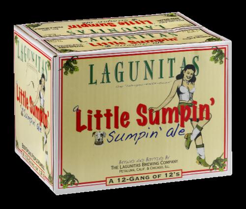 Lagunitas Little Sumpin' Ale Perspective: back